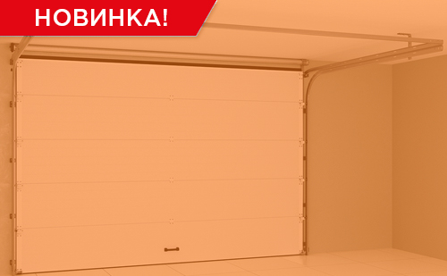 автоматические секционные ворота RSD02LUX ГК Регион-Гарант